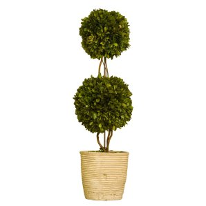 Boxwood-Topiary-Decor